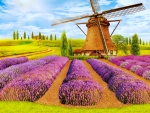 Mill in lavender field
