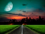 The road to ....Paradise