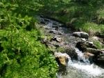river...