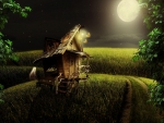*Little wood house in the moonlight*
