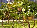 *Vintage garden decor*