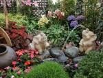 *Garden scenery*