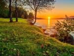 Green Coast at sunset