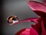 Water Drop Reflection F1