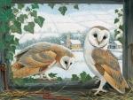 PAIR OWLS