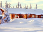 log cabin covered in snow