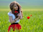Poppie Field Dream