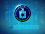 Design CIA Terminal Interface