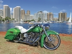 2013-Harley-Davidson-Custom-Softail-Deluxe