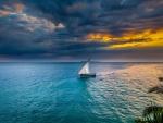 African Coast
