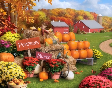 Autumn Memories - fall season, autumn, harvest, colors, love four seasons, farms, attractions in dreams, flowers, butterfly designs, pumpkins