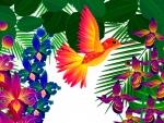 Bright Tropical Hummingbird