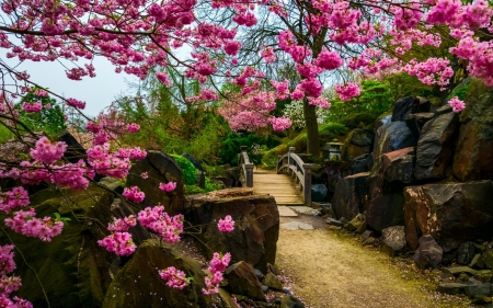 Japanese Spring Garden