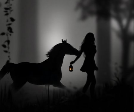 Black horse with lady and moon