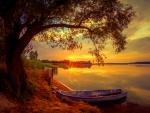 Fiery river sunset