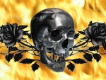 Skull and Black Roses