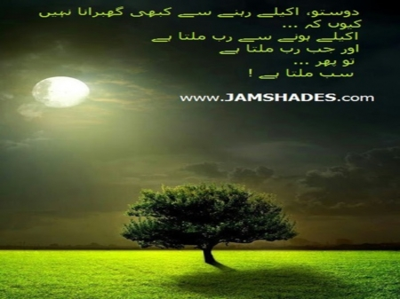 I Love Allah Fields Nature Background Wallpapers On Desktop
