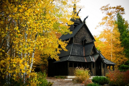 Fall Season - autumn, leaves, yellow, chappel, trees