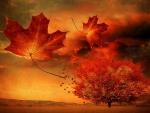 *Autumn breeze*