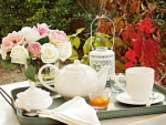 *Breakfast in the garden*