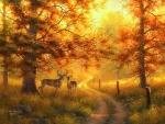 Glowing Mist in Fall