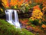 Autumn Highlands