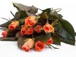 Beautifu Roses