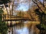 wooden pedestrian bridge over river hdr