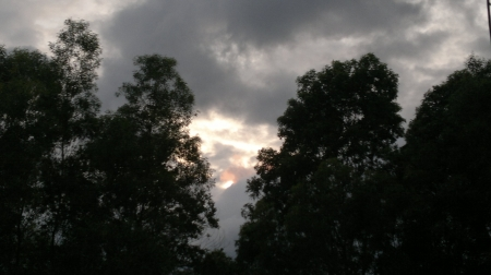 Sunrise - Clouds, Trees, Sun, Nature