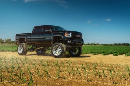 Gmc-Sierra-Denali - GM, Truck, Black, Lifted