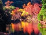 Fall Colours in Malibu Canyon, California