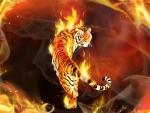 fiery tiger