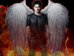 Angel or Damon?