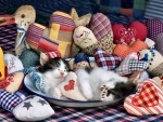 Patchwork Hearts - Kittens