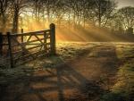 open gate to sunrise