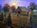 Harvest Moonlight