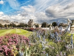 the tuileries gardens in paris hdr