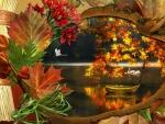 *The beauty of autumn*