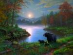 Moonlight at Bedtime