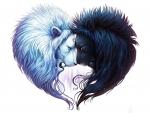 Yin yang lion heart