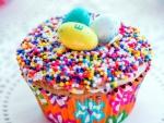 Cupcake and Sprinkles