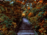 steps in high park toronto canada hdr