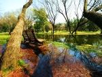 Autumn Flood