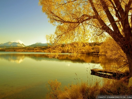 Almost Sunset Time - autumn, warm, grass, lake, tree, water, sunsets, aqua, shadows, nature, season, river