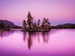 lake tahoe in magenta