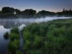 Morning Fog at Lake Forest