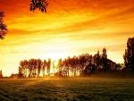 sun rising over a farm