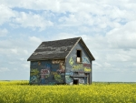 little graffiti house on the prairie