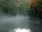 Misty Ausable