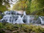 Waterfall in Pipers Glen, Nova Scotia, Canada